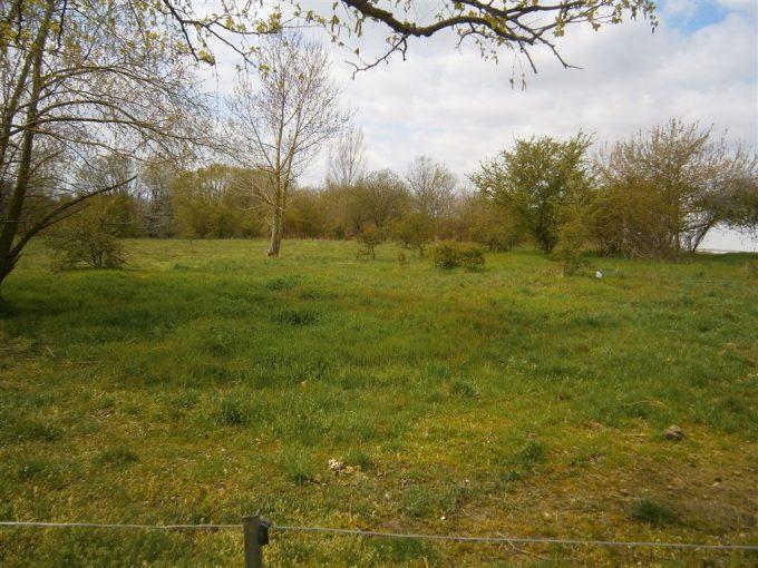 Grundstück im Gewerbegebiet Neukirchen – Nord